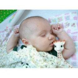 Sophie the Giraffe Teether from Vulli - A French Tradition